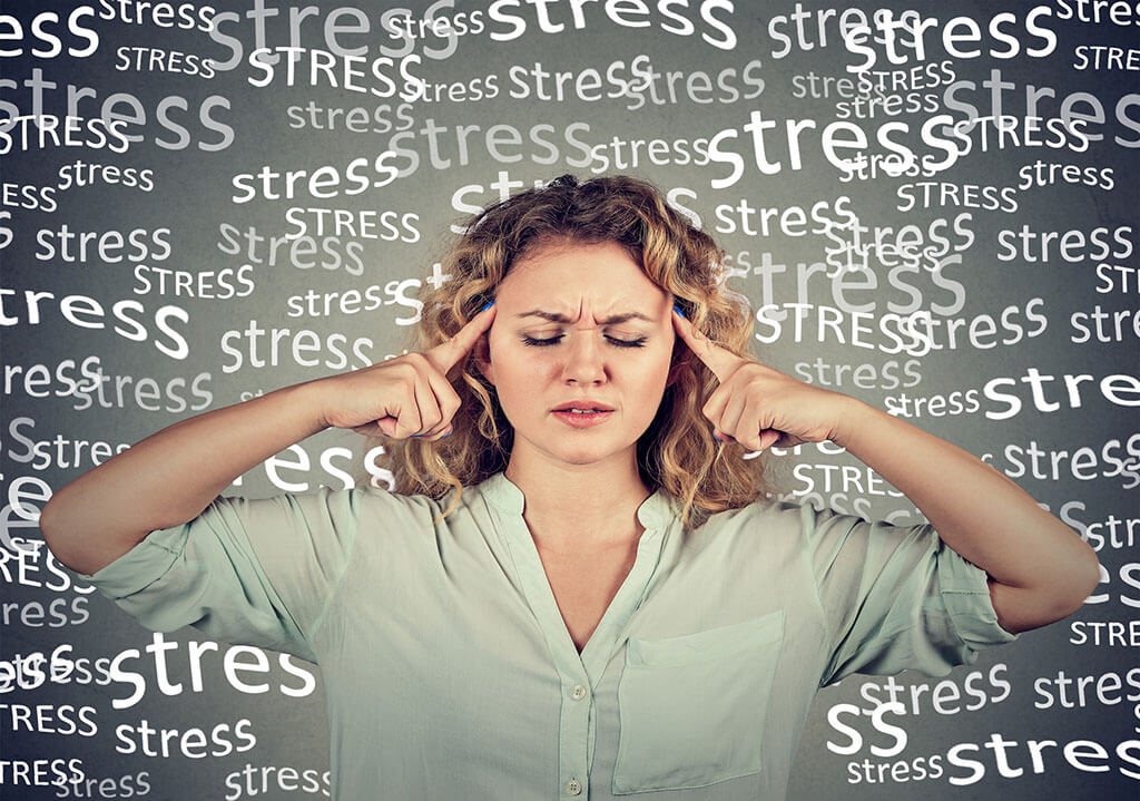 Apicol Anti Stres